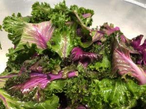 Massaged Purple Kale